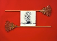 Untitled, silver print on wood with small rakes, 42 x 24.5 x 1.75 in., 2013